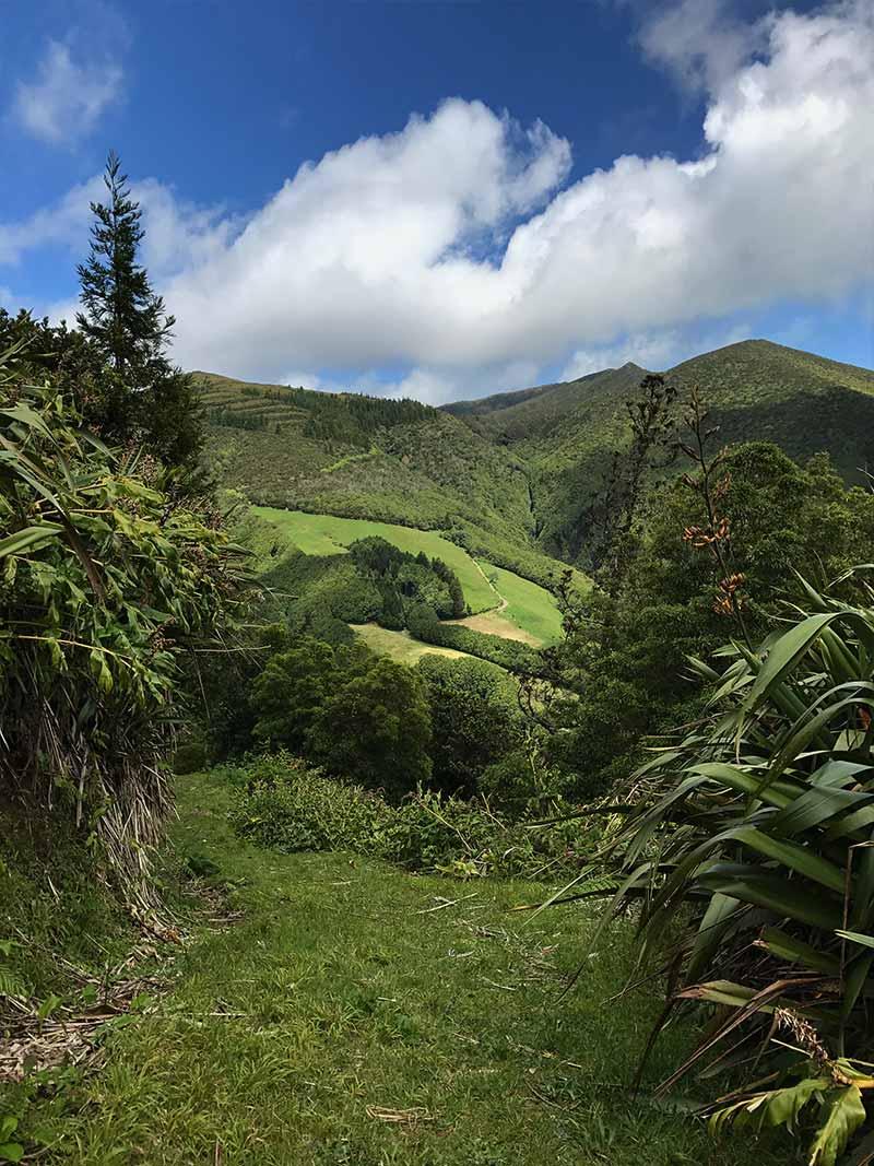 Lagoa de fogo's hike - São Miguel - Azores