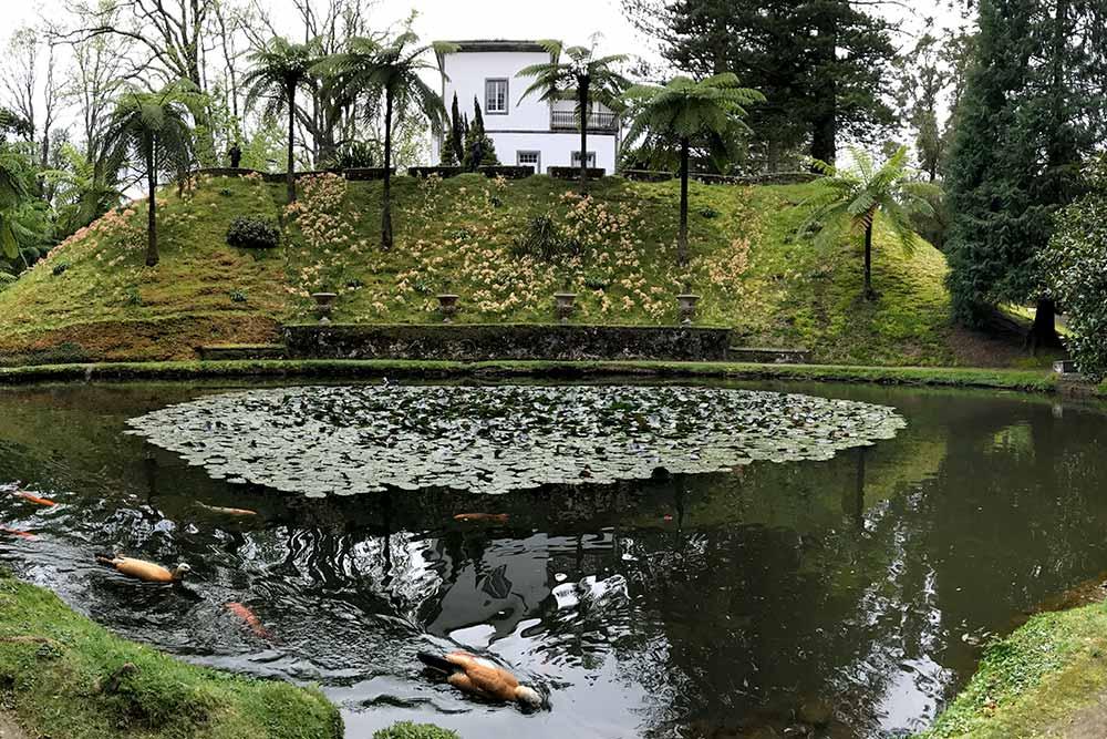 Terra Nostra - Jardins - Sao Miguel