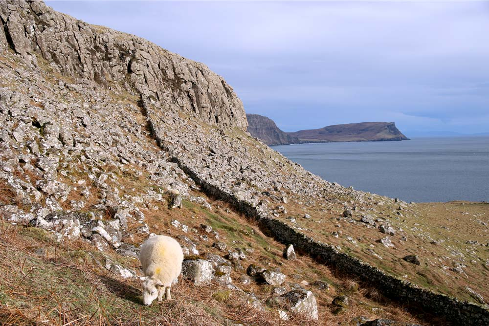 Neist Point - île de Skye
